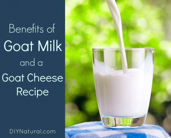 Benefits of Goat Milk and Goat Cheese Recipes
