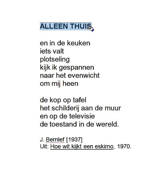 Leraar Tee Gedicht Bernlef