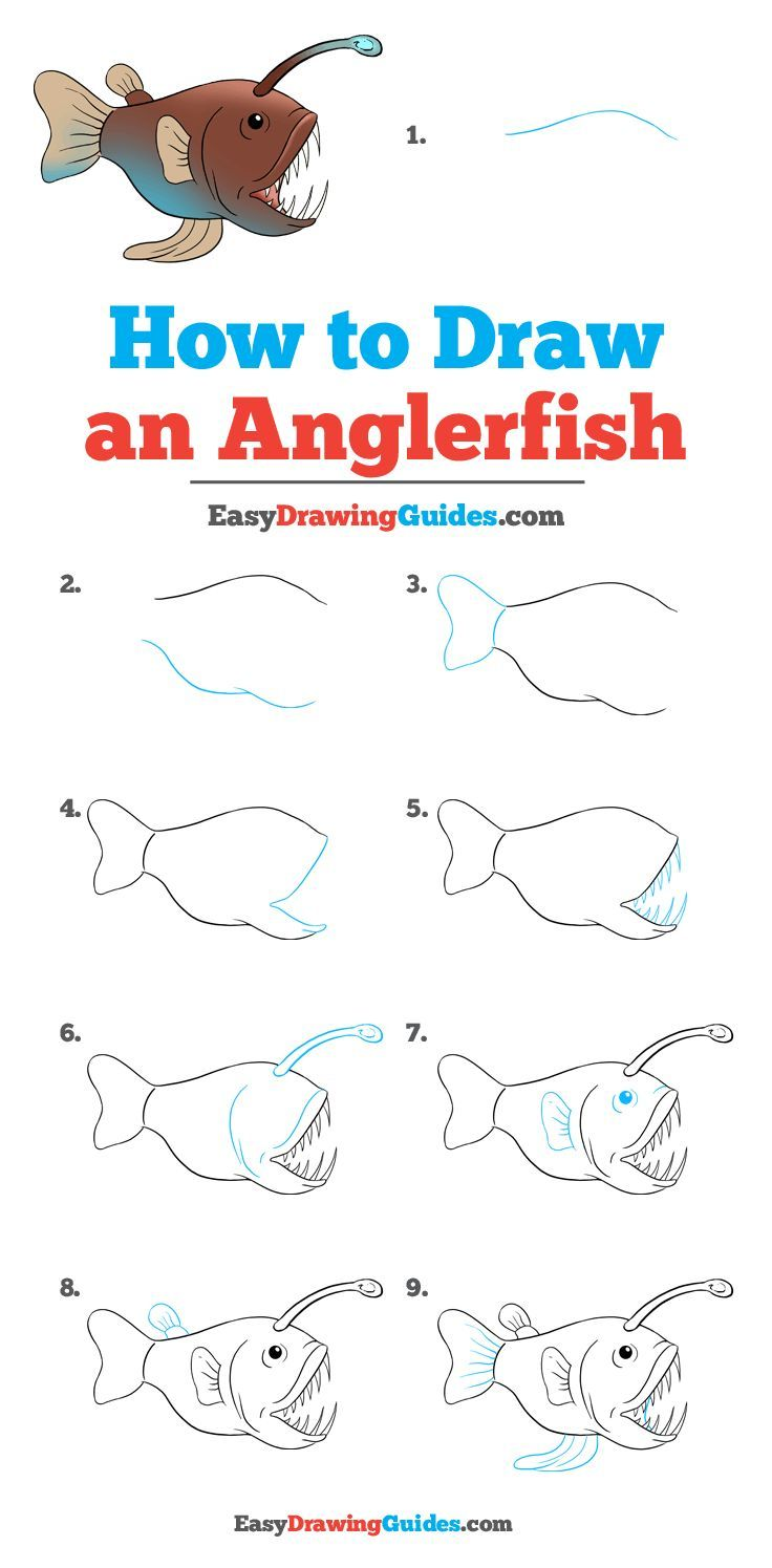 How To Draw An Angler Fish Drawing Tutorial Easy Angler Fish Art
