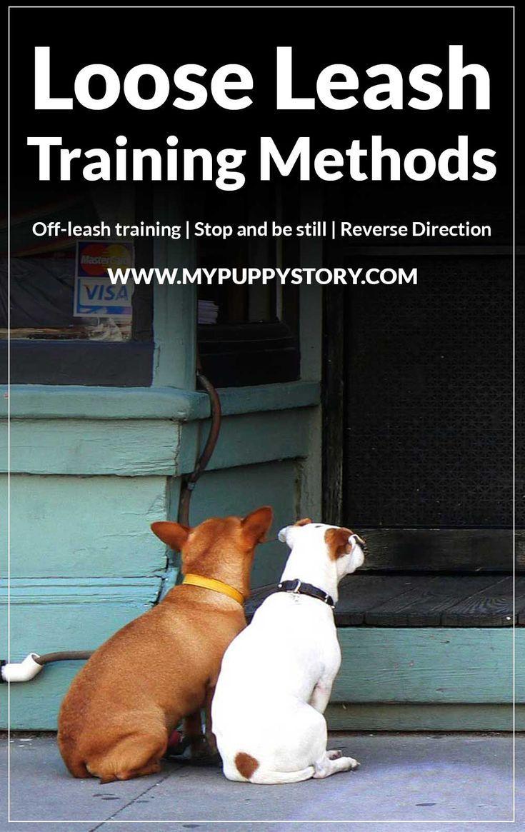 Loose Leash Training For Dogs Leash Training Dog Training Dog