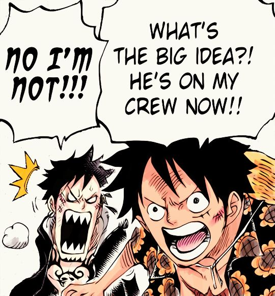 Unofficial Strawhat