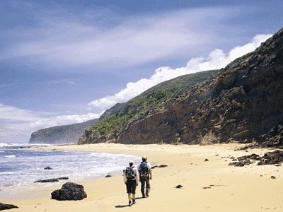 Top 10 Australian Bushwalks