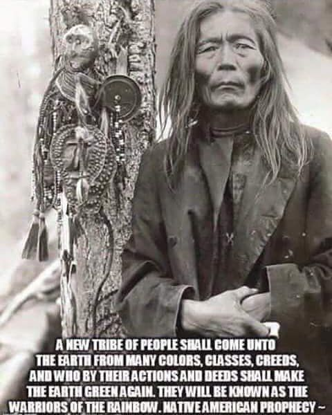 Warriors Of The Rainbow Tribe: 136 Best Images About Native American On Pinterest