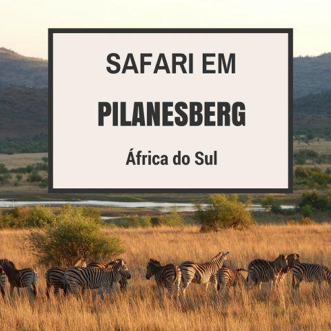 Um dia de safári em Pilanesberg! (África do Sul) Dica de viagem para o seu roteiro por Joanesburgo, Sun City, Pilanesberg - África do Sul