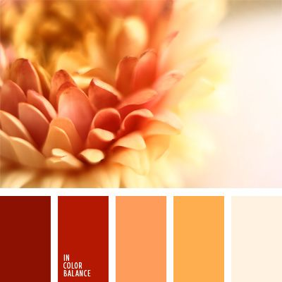color gamboge, color ladrillo, color naranja quemado, color pelirrojo zanahoria, colores contrastantes, colores fuertes, paleta de colores monocromática, paleta del color rojo monocromática, rojo coral, selección de colores, tonos cálidos, tonos rojos.