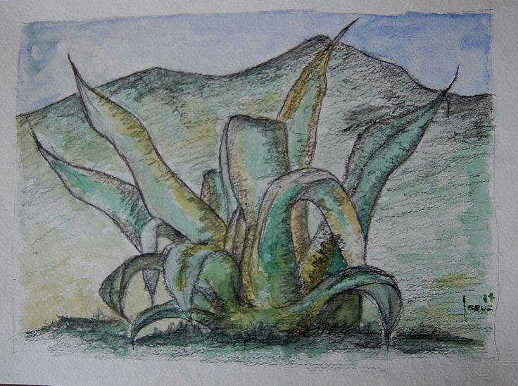 Maguey. Acuarela sobre papel. 28x37cms. 2014. Jesús Martínez.