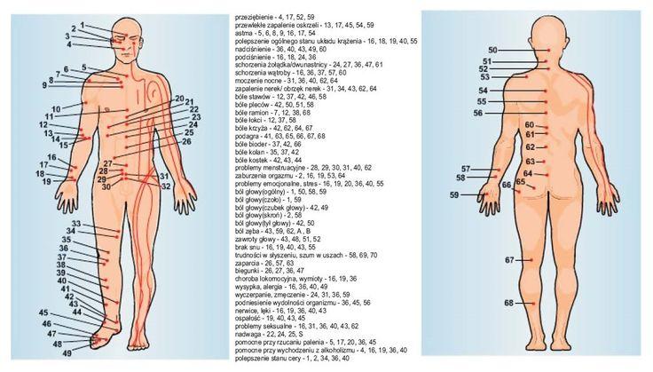 Akupunktura – skuteczna metoda leczenia o niezwykłej historii   Aneta Bloguje