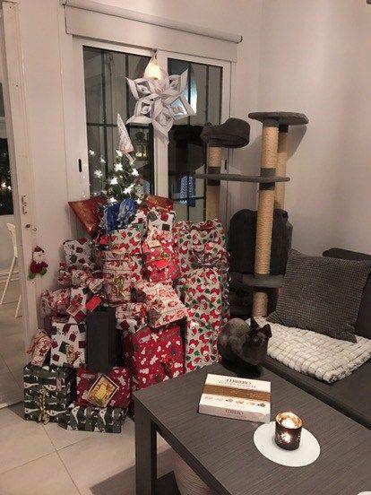 """GOD FORTSÄTTNING! Har julenvarit bra? Lugn och skön? Vi hade en lugnjul (ja förutom barnens vanliga bråk...) utan en massa""""måsten"""". Min äldsta son sa igår """"Mamma vet du vad jag tycker varit det bästa med hela julen?"""" Jag började rabbla upp alla hans julklappar men nej inget var rätt. Tillslut fick han berätta själv. """"Julskinkan!!"""" Hahhaha! Vi hann med hela tre julskinkor! Den tredje är snart uppäten. Som sagt allt uppskattas lite extra när utbudet är begränsa..."""