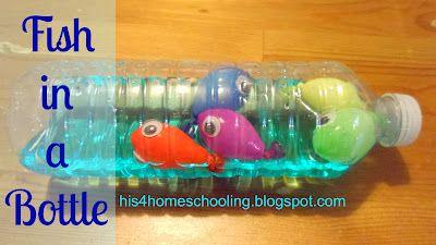 Acuario en botella. H is for Homeschooling: Fish in a Bottle (travel aquarium)