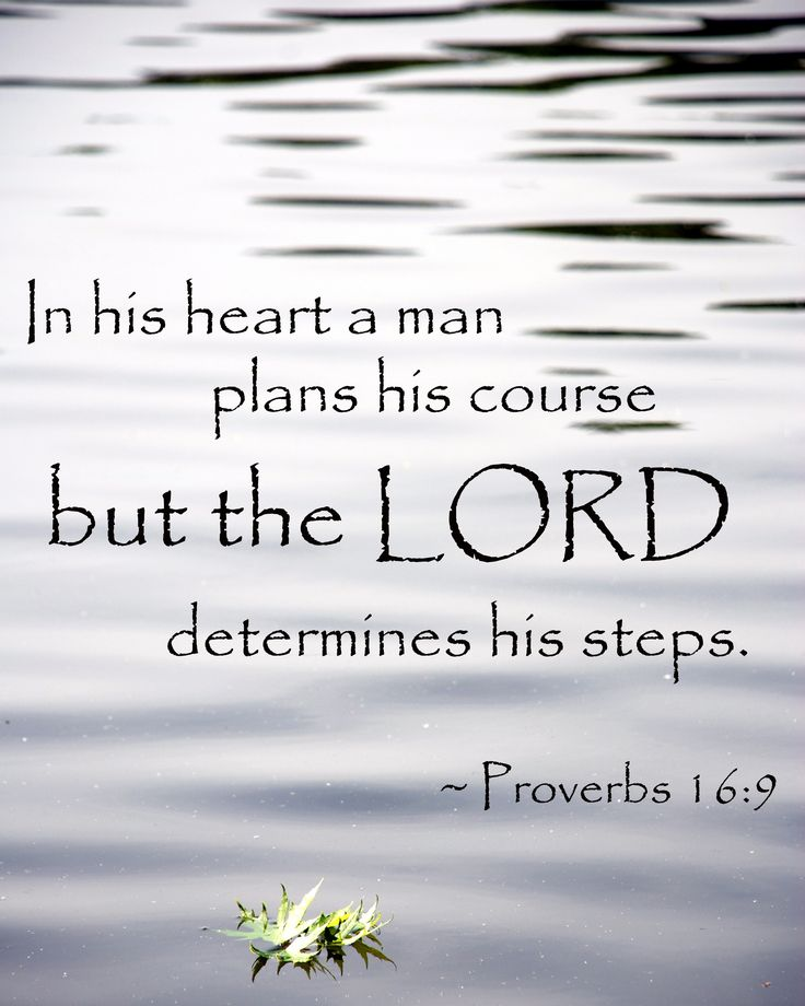 "The Lord's Sovereignty – This verse is so true—we make all our plans, but in the end, thankfully, it's the Lord's plans for us that actually get done. | ""In his heart a man plans his course but the Lord determines his steps."" – Proverbs 16:9 NIV 