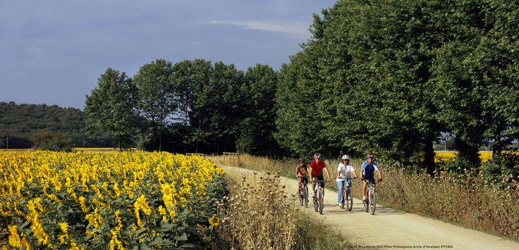 Удобные велосипедные дорожки дают возможность совершать как однодневные, так и многодневные маршруты по всей Каталонии.