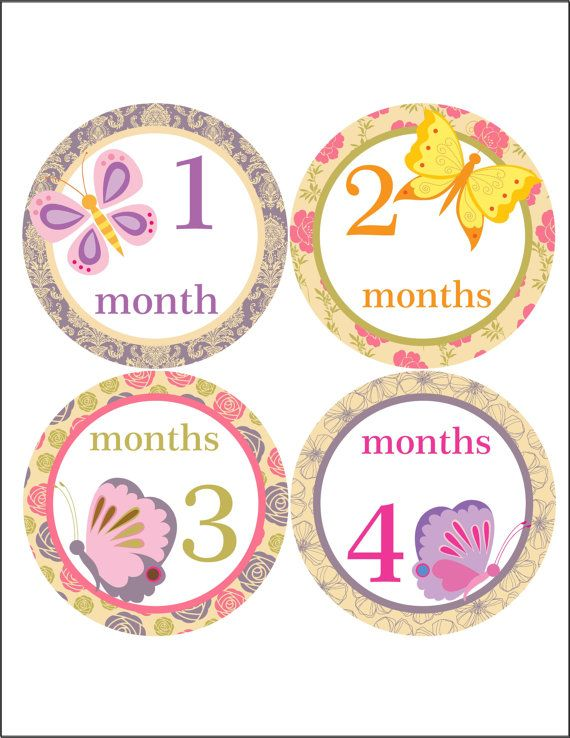 Monthly onesie stickers baby girl month by BlueMonkeys on Etsy, $8.75