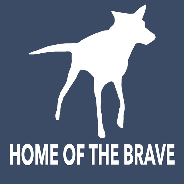 home of the brave podcast - Google Search