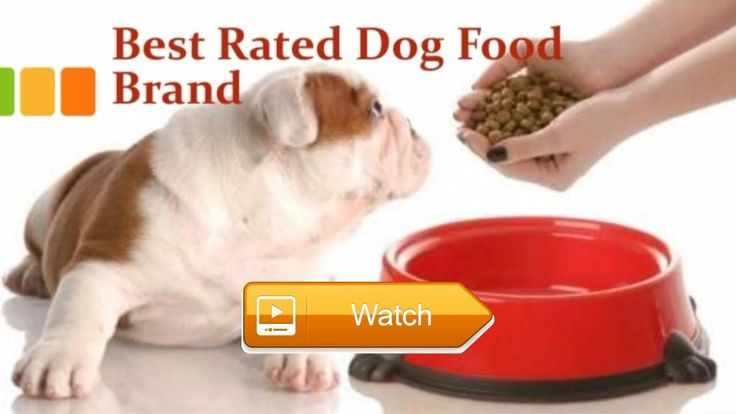 High Quality Dog Food Brands Top Rated Dog food Brands  High Quality Dog Food Brands Top Rated Dog food Brands top rated dog food Number Nutro Dog Food Nutro Dog Food and wet pet food made of  on Pet Lovers