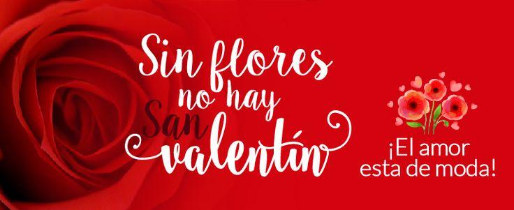 ¿Tienes dudas sobre si es una buena idea regalar #flores por #SanValentín? En nuestro post te contamos porque acertarás seguro con este #regalo. http://floristanavarro.com/blog/6-razones-por-las-que-enviar-flores-por-san-valentin/