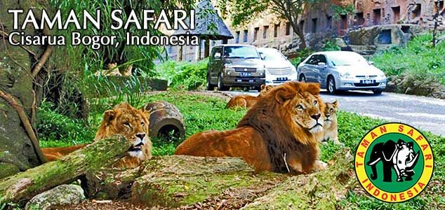 Taman Safari Cisarua Puncak West Java Indonesia Theme