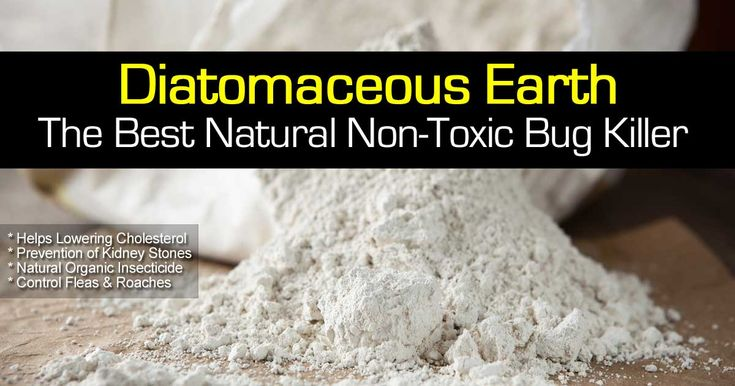 Diatomaceous earth is not a topic that many people know much about or have necessarily heard of. Get ready for a crash course in this naturally good product! No one likes to fill their bodies with harmful chemicals, and you should not have to do it! Nature usually offers a better alternative. Diatomaceous earth is …
