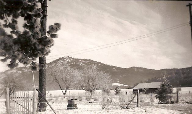 Canfield To Nettleton. 1946