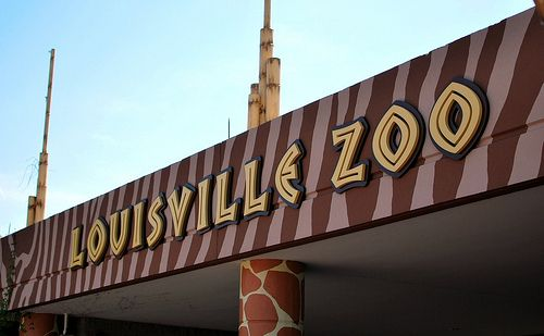 louisville zoo memorial day