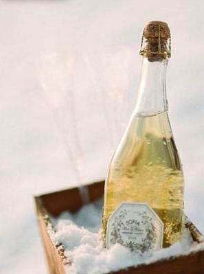 Champagne on snow - This picture made me smile.  I know many fellow Canadians that have resorted to keeping their beverages cold in a convenient snow bank when your house is full of friends & family and the fridge is packed with holiday foods...
