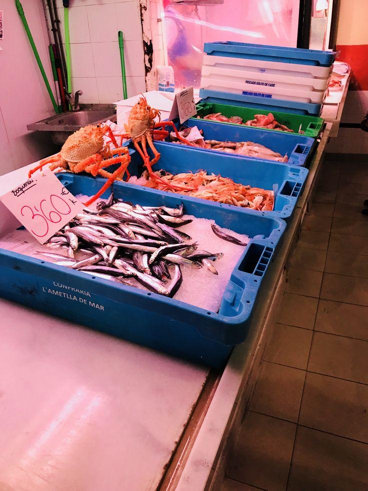 Cuando estaba en la parte de pescado del mercado me gustaban todos los diferentes tipos de pescado y cangrejos que tenían.