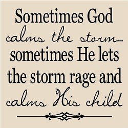 """""""I'll praise you in this storm, and I will lift my hands. You are who you are. No matter where I am. Every tear I've cried, you hold in your hands. You never left my side, and though my heart is torn...I'll praise you in this storm."""" -Casting Crowns"""