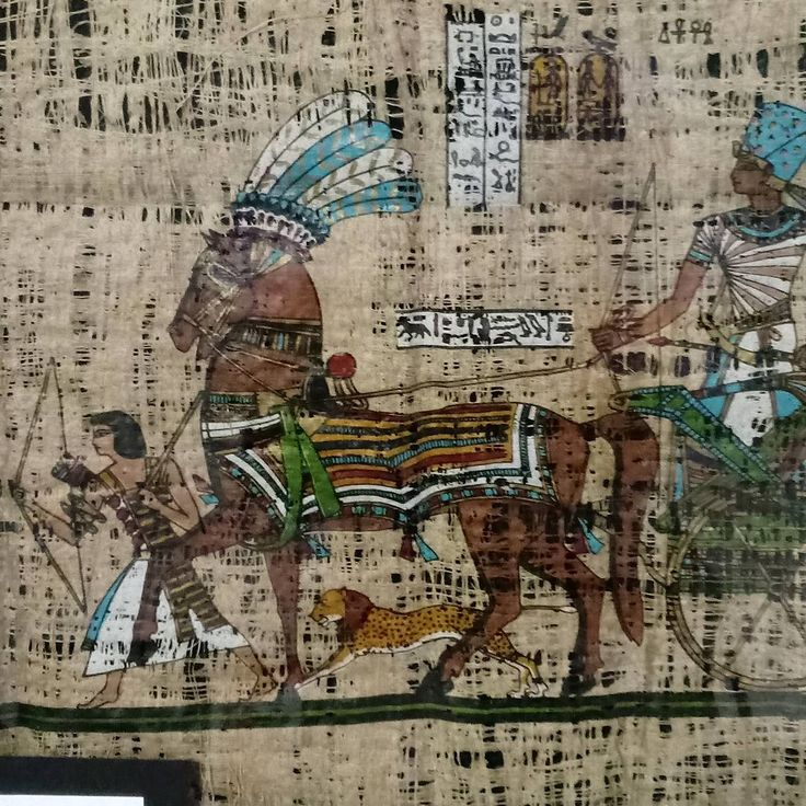 This piece is not my art, but is on display at Garrison School in Liberty, Missouri.  It's painted on real  papyrus. The artist did an awesome job.  #art#display#painting#papyrus#garrison#school#garrisonschool#liberty#missouri#horse#drawn#chariot#pharoah#servant#hunt#ancient#egypt#egyptian http://misstagram.com/ipost/1548145418755876338/?code=BV8Hg5Rl6Xy