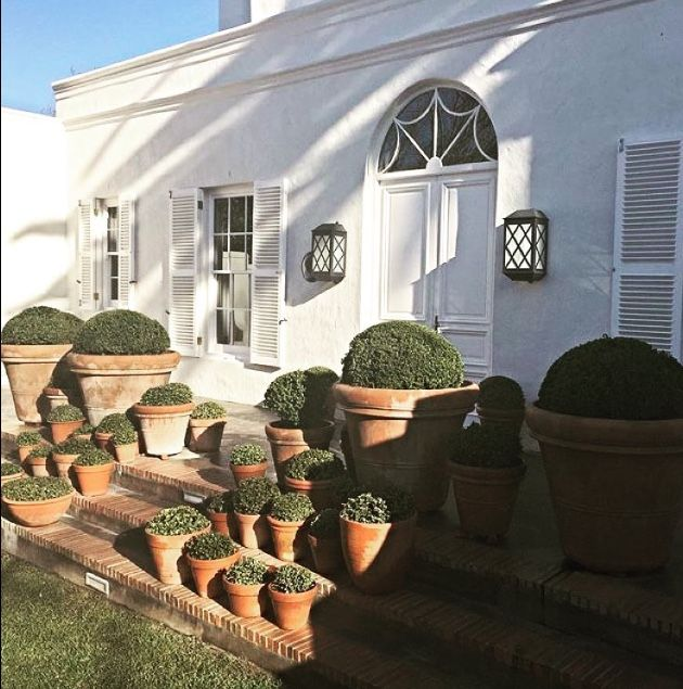My house in Cape Town serenacrawford.com