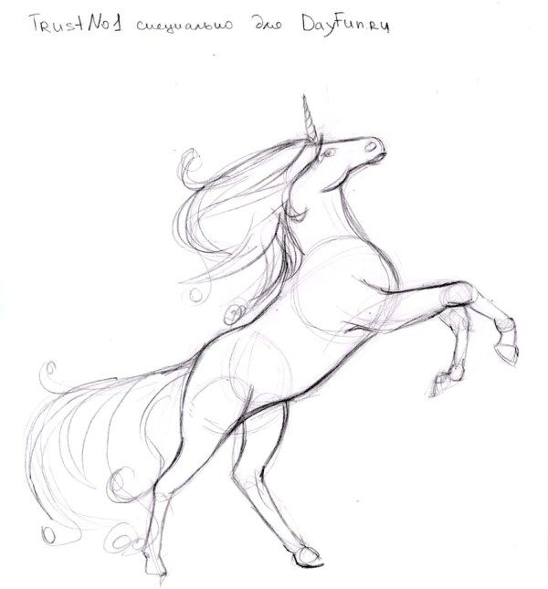 How to draw a unicorn step by step 4