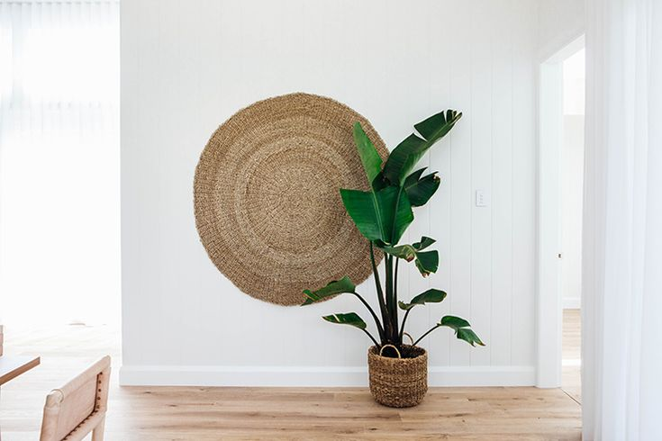 Banana palm is the best plant to bring the beach house style to life