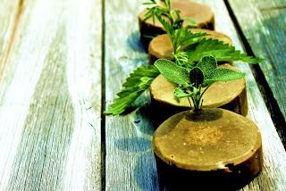 Шампуневое мыло Травы, мед и зеленая глина.