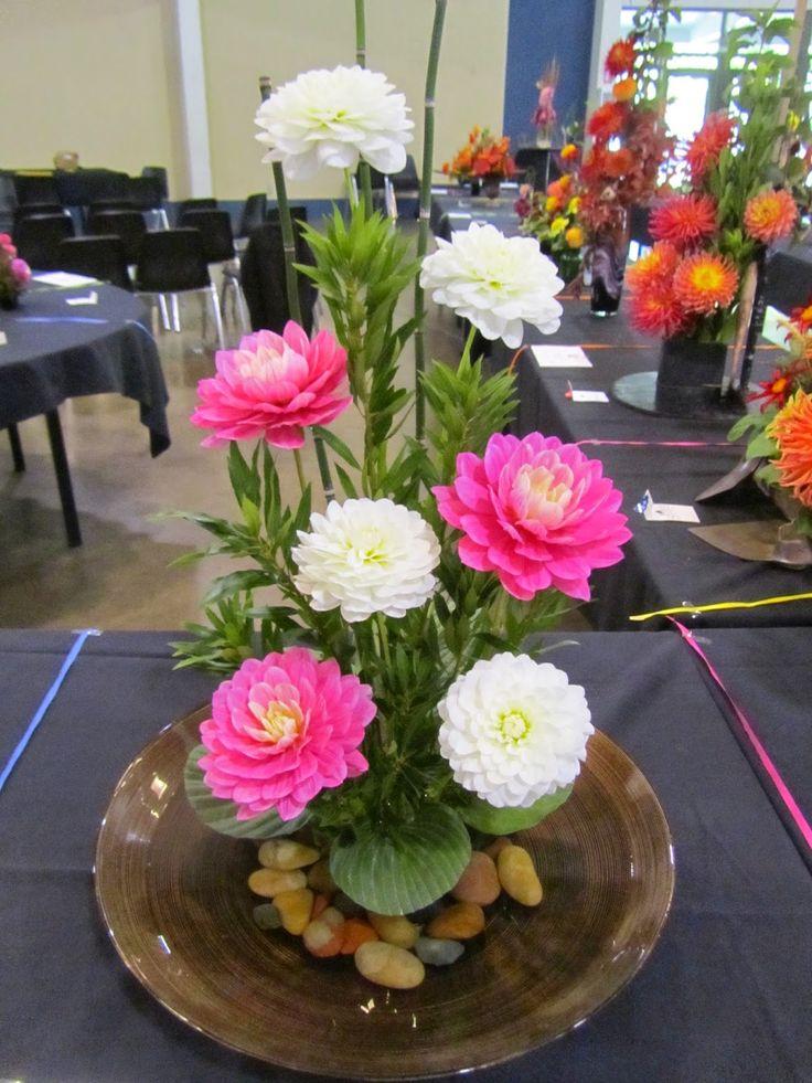 Lane County Dahlia Society: 51st Annual Dahlia Show Recap