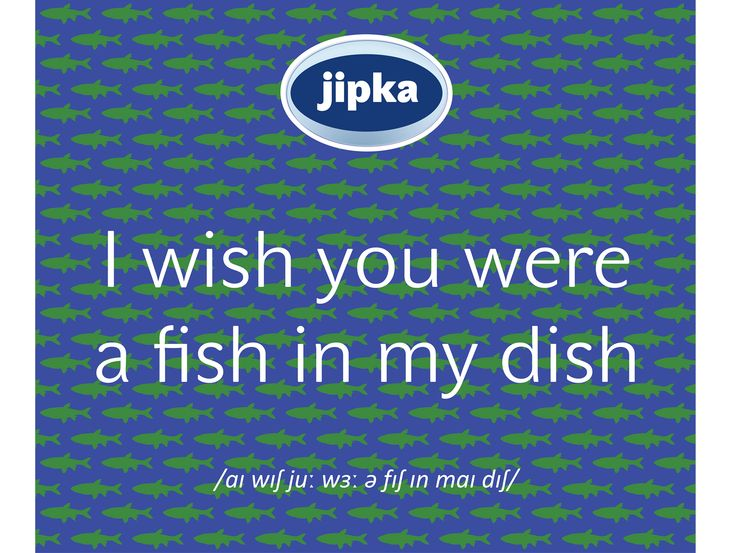 Fish in my dish