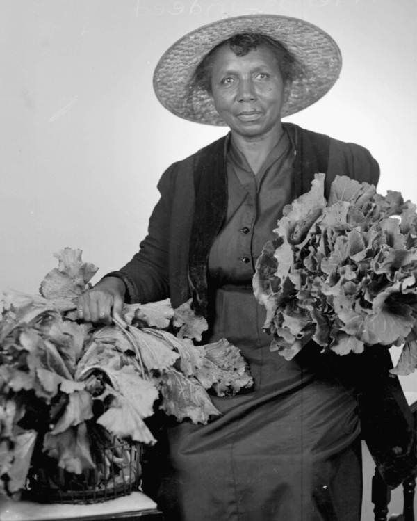 African American woman with mustards - Tallahassee, Florida  Image Number PR11839 Year 194- Series Title General: Print collections Specific: Print collections Physical Description 1 photonegative - b&w - 5 x 7 in. Subject Term African American women--Florida--Tallahassee--Portraits Brassica juncea