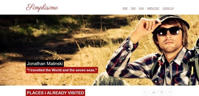 WordPress Themes Themes4all Simplisimo