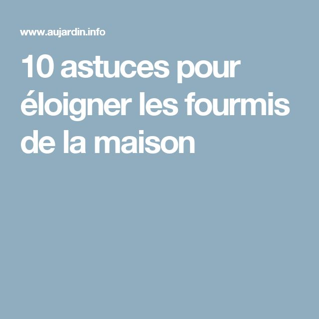 25 best ideas about fourmis maison on pinterest anti for Anti fourmis dans la maison