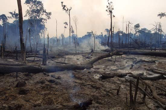 Preserving Nature ~  Thousands upon thousands of acres have been cleared in such a way that it shall not be recovered, and shall not be renewed until the Great and Final Destruction.   Read more
