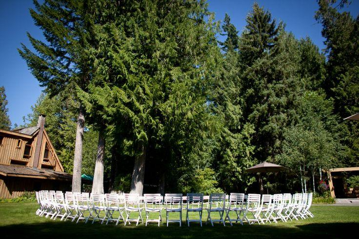 Circle under the cedars