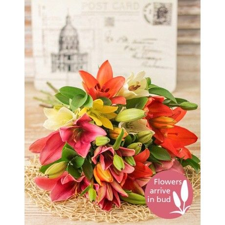 Assorted Lily Bouquet | Mixed Lilies | inMotion Flowers