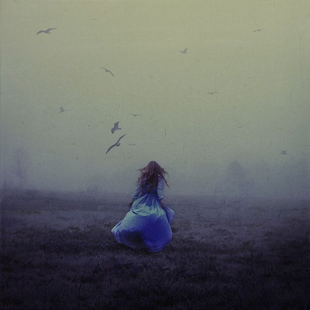 .: Dreams, Mists, Natural Beautiful, Blue, Childhood, Birds, Photography, Brooks Shaden, Running Away