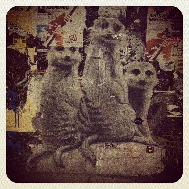 Urban Art.. Three friends hanging around.