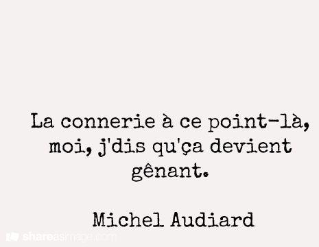 La connerie à ce point là, moi, j'dis qu'ça devient gênant - Michel Audiard