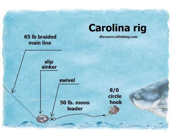 Catfish+rigs:+How+to+tie+a+catfish+rig