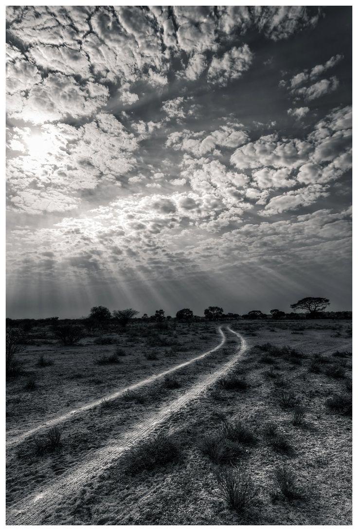 06 Kalahari | Black and White Study | Danie Bester http://buff.ly/1VEvENw