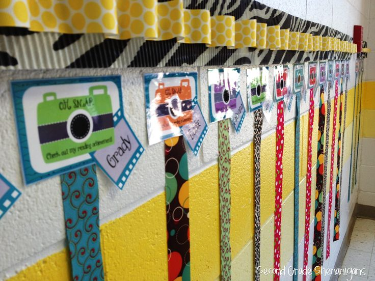 Classroom Incentive Ideas : Best images about animal print classroom on pinterest
