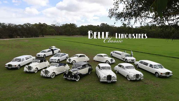 A rare picture of the Belle Classic Limousine collection in one place. What is your perfect wedding car?
