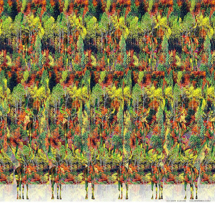 3D Stereograms - Camouflage