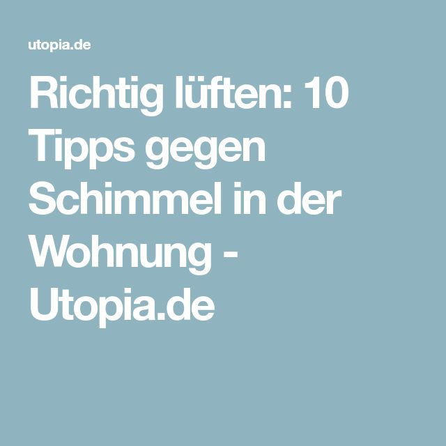 Richtig lüften: 10 Tipps gegen Schimmel in der Wohnung - Utopia.de
