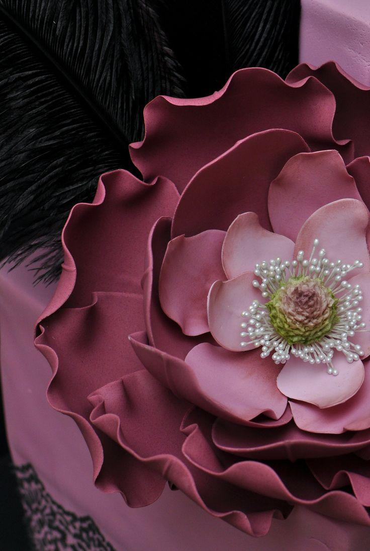 Magnolia/Rose Hybrid