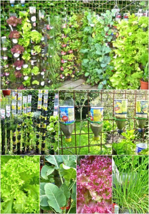 Best 25 Tower Garden Ideas On Pinterest Vertical Garden Systems Garden Compost And Small